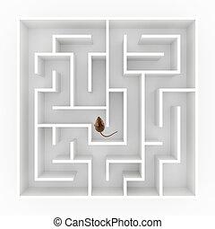 labyrinth, maus