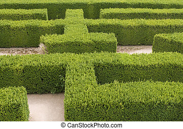 Labyrinth - Part of a natural maze at a castle in Europe