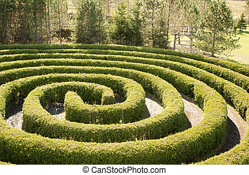 labyrinthe, circulaire