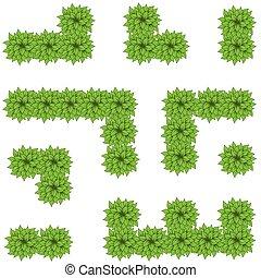 labyrinthe, feuilles, vert