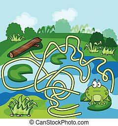 labyrinthe, grenouilles, jeu