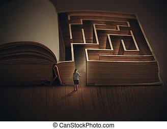 labyrinthe, livre