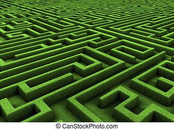 labyrinthe, vert