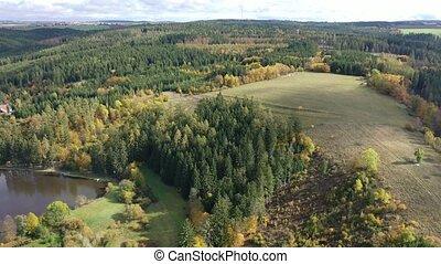 lac, aérien, multi, automne, vue, scénique, arbres, coloré, paysage