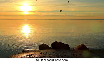 lac, beau, levers de soleil, sur