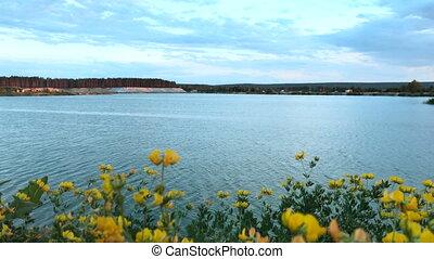 lac bleu, fond jaune, fleurir, fleurs