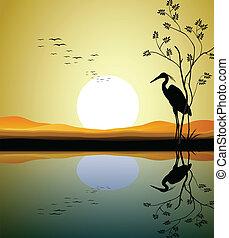 lac, héron, silhouette