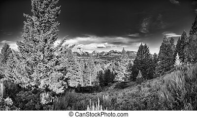 Paysage montagne wyoming accident paysage montagne for Jackson wyoming alloggio cabine