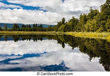 lac, matheson, près, renard, glacier, ilôt sud nouvelle zélande