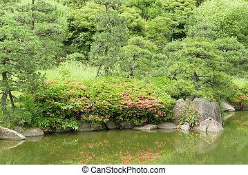 Jardin fleur zen japonaise arbre tang plante fleur for Plante verte japonaise