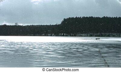 lac, temps, surgelé, hiver