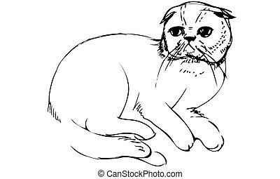 vector sketch of a cat sittingk