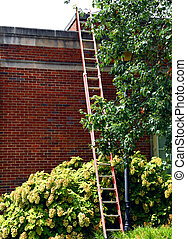Ladder Extends to Roof for Repairs