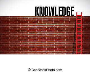 ladder to knowledge illustration design