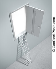 Ladder to the door
