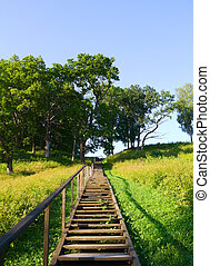 ladder to the hill, summer