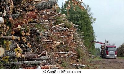 laden, winzig, schnitt, Holz, lastwagen, Bäume