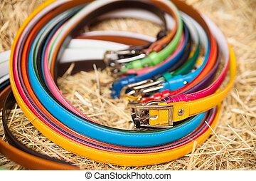 Ladies colored belts closeup
