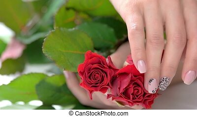 Ladies gentle hand caress red roses. Female beautiful hand...