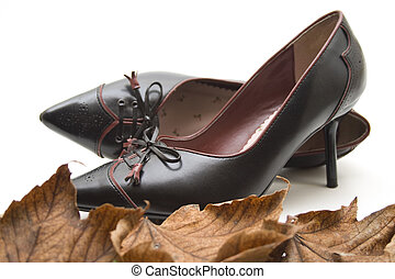 Ladies shoe   - Ladies shoe with autumn foliage