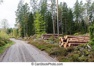 lado estrada, madeira, país, pilhas