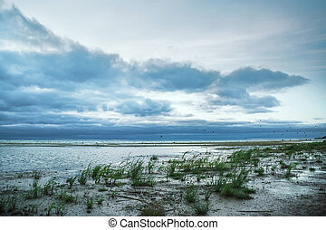 Ladoga - Cloudy sky and flock of seagulls over the Ladoga...