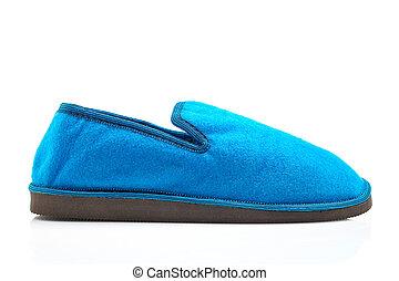 Lady blue slipper, isolated on white background. Path ...