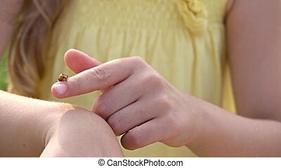 lady bug on girl hands close up