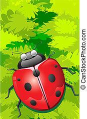 Lady Bug sitting on Leaf
