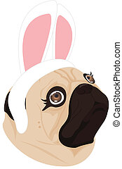 lady dog rabbit