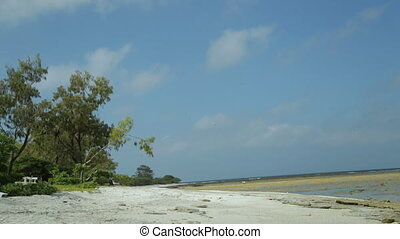 Lady Elliot Island Beach, Great Barrier Reef