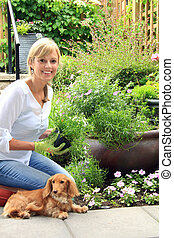 Smiling fifty year old lady in the garden, with dog by her side, holding a pack of lobelia flowers.