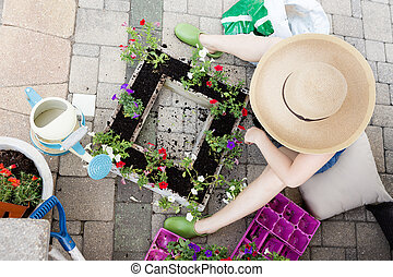 Lady gardener transplanting petunias