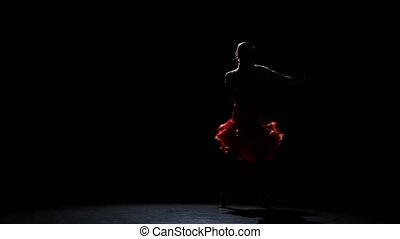 Lady in beautiful dress in the studio on a dark background,...