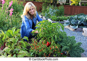 Lady vegetable gardener - Smiling blond woman in the ...