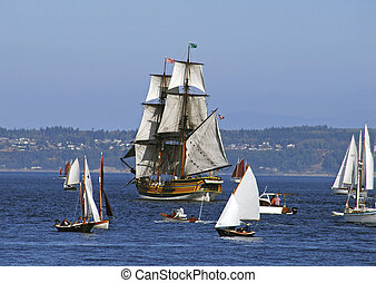 Lady Washington - lady washington among sailboats at sea