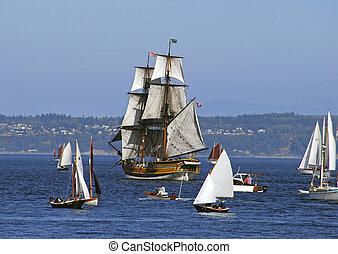 Lady Washington - lady washington among sailboats at sea