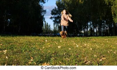 Blurred lady with long loose flowing hair runs behind furry dog on leash on green meadow against large park trees