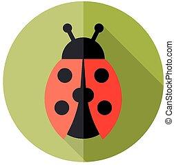 ladybird flat icon