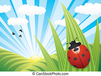 ladybird, ligado, a, folha