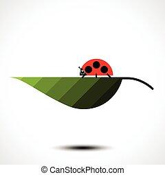 Ladybird on a green leaf. Vector illustration