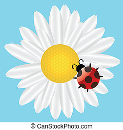 Ladybird on Daisy on blue background. vector illustration
