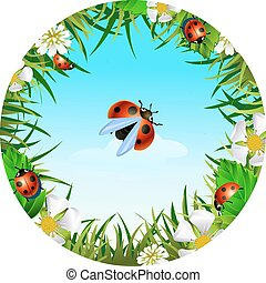 ladybird on sky background