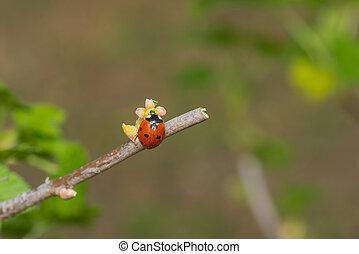Ladybird sitting on a tiny currant flower