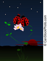 Ladybirds in love - Two ladybirds in love by night on ...