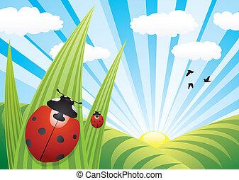 ladybirds, ligado, a, folhas
