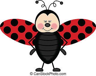 ladybug, asas
