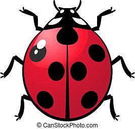 Ladybug - Vector illustration of a ladybug over white. EPS...