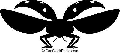 ladybug, (coccinellidae)
