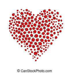 ladybug heart - ladybugs forming heart shape on white...